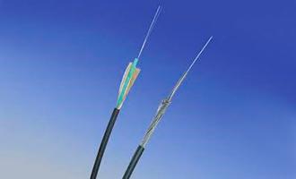 Detector Linear de Temperatura PFS